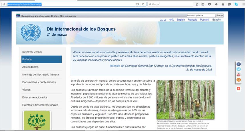 Día Insternacional de los Bosques