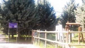Parque Europa 4
